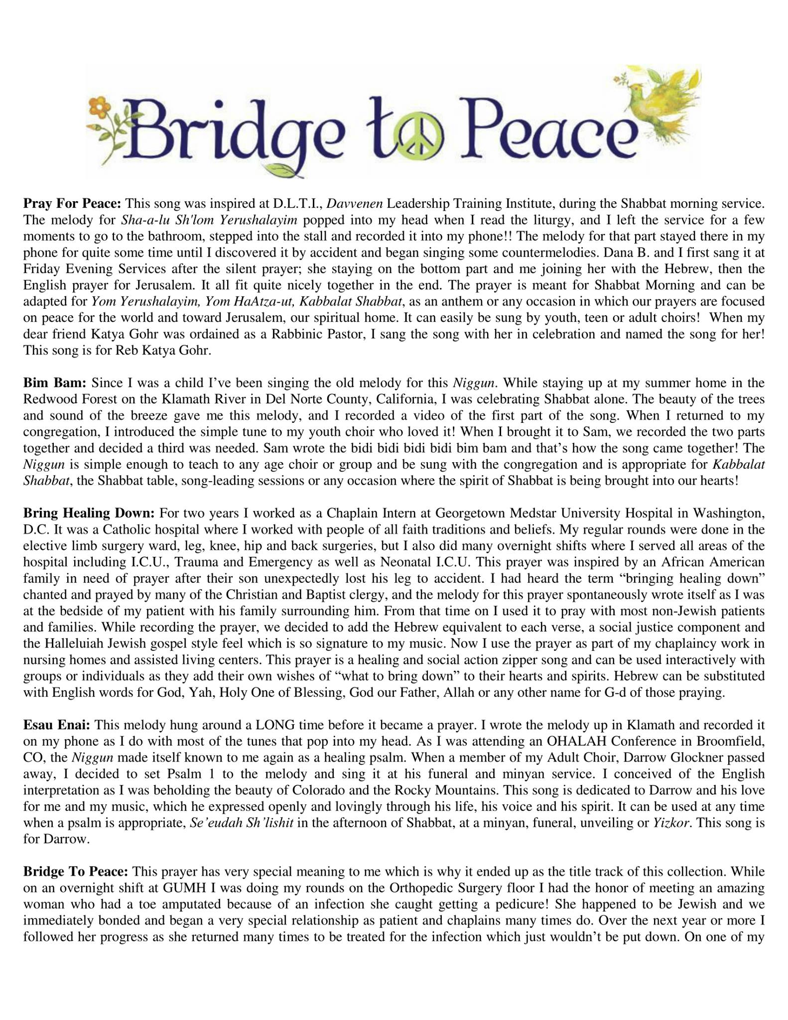 Bridge To Peace CD Release Party Program - Insert page 1